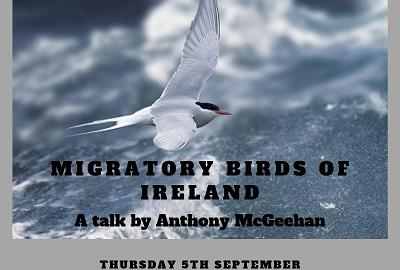 Image of poster for Migratory Birds of Ireland talk with Anthony McGeehan