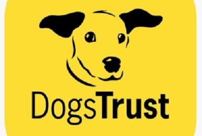 Dogs Trust Workshop with Maeve and Penny