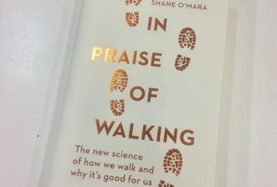 'In Praise of Walking: The New Science of How We Walk and Why it is Good for Us' Talk by Prof. Shane O'Mara