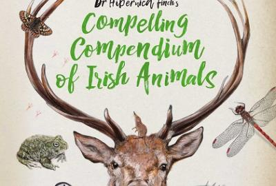 Wildly Wonderful World of Irish Animals Children's Nature and Art Workshop