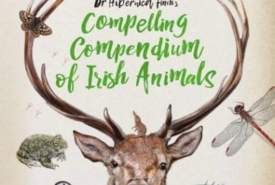 Wildly Wonderful World of Irish Animals Nature and Drawing Workshop