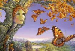 Irish Folklore & Mythology for Children with Steve Lally