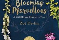 Wildflower Talk with Zoe Devlin