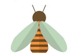 Image of a bee for Summer Stars Special Story Time: All about Bees