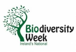 Biodiversity Talk with Jim Hurley